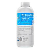 Многофункциональный реагент для бассейна Wellness Therm 1л